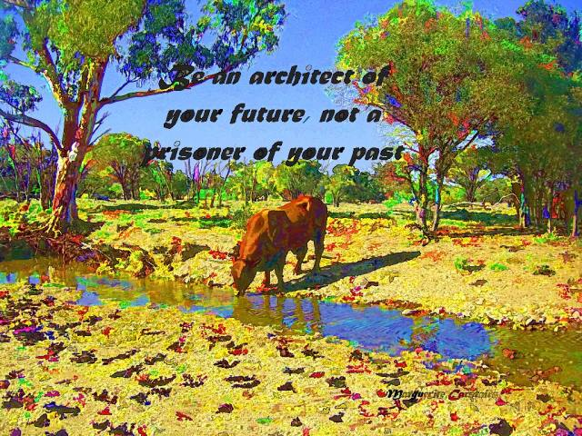 Be an architect of your future, not a prisoner of your past