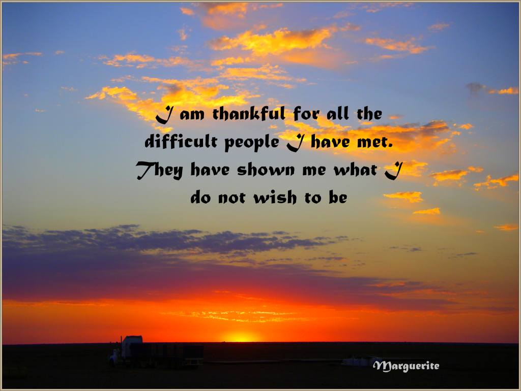Difficult People Quotes I Am Thankful For All The Difficult People I Have Met Quotes