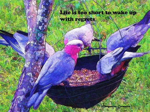 Life is too short to wake up with regrets