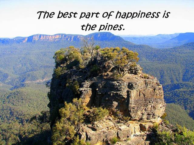 The best part of happiness is the pines