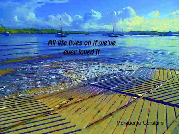 All life lives on if we've ever loved it