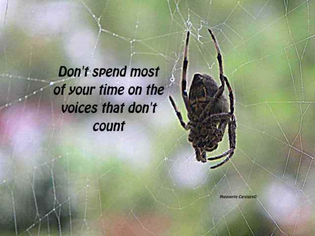 Don't spend most of your time on the voices that don't count