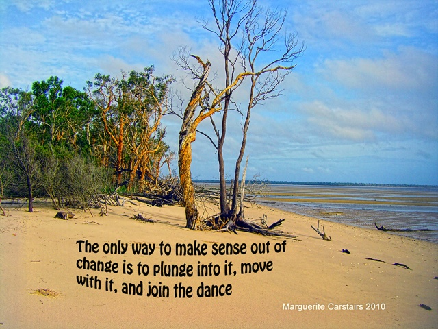 The only way to make sense out of change is to plunge into it, move with it, and join the dance