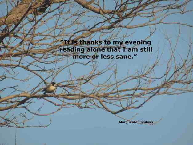 """It is thanks to my evening reading alone that I am still more or less sane."""