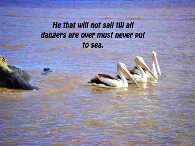 He that will not sail till all dangers are over must never put to sea.