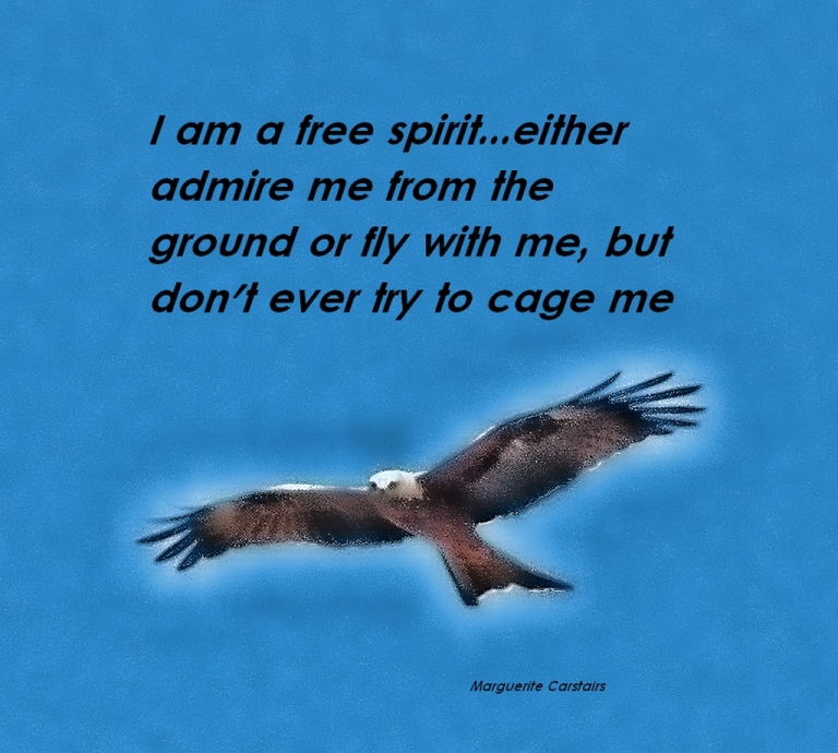 I am a free spirit...either admire me from the ground or fly with me, but don't ever try to cage me