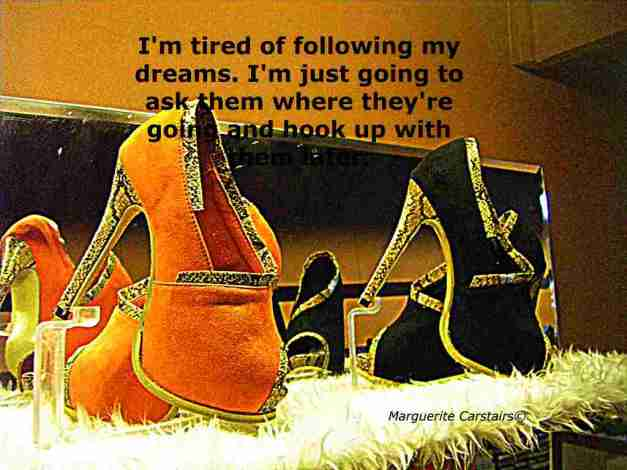 I'm tired of following my dreams. I'm just going to ask them where they're going and hook up with them later.