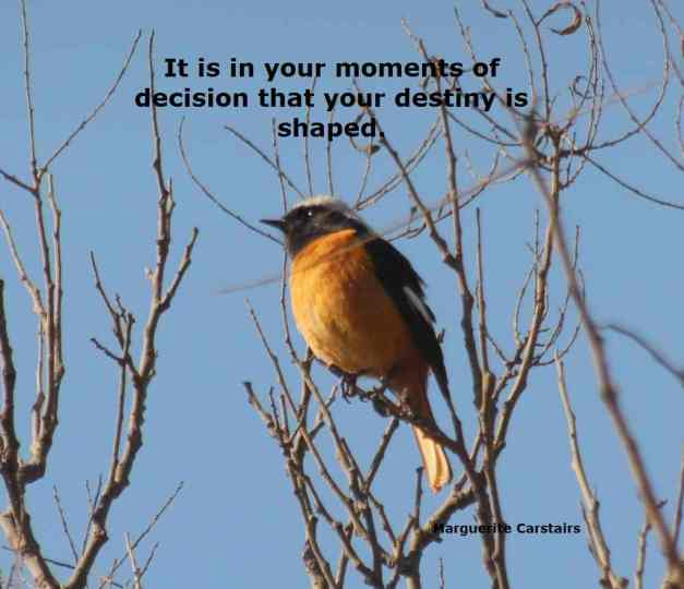 It is in your moments of decision that your destiny is shaped.