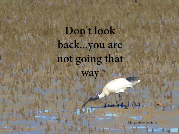 Don't look back...you are not going that way