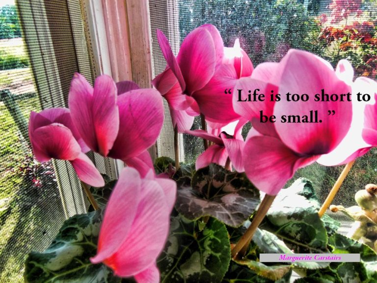 """""""Life is too short to be small"""