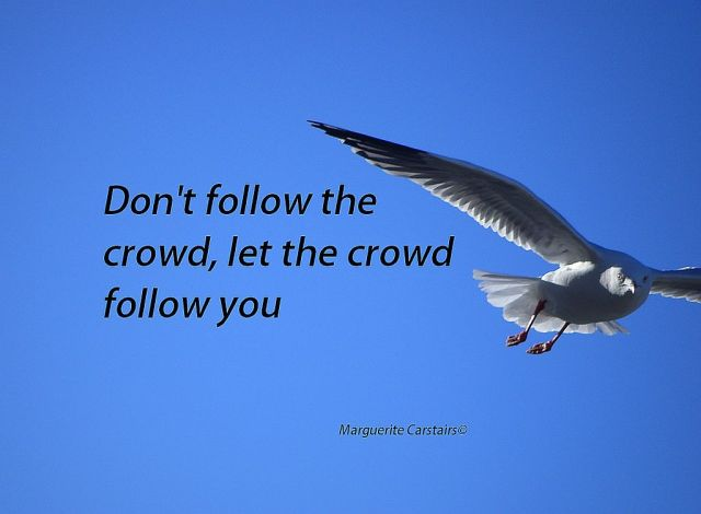 Don't follow the crowd, let the crowd follow you