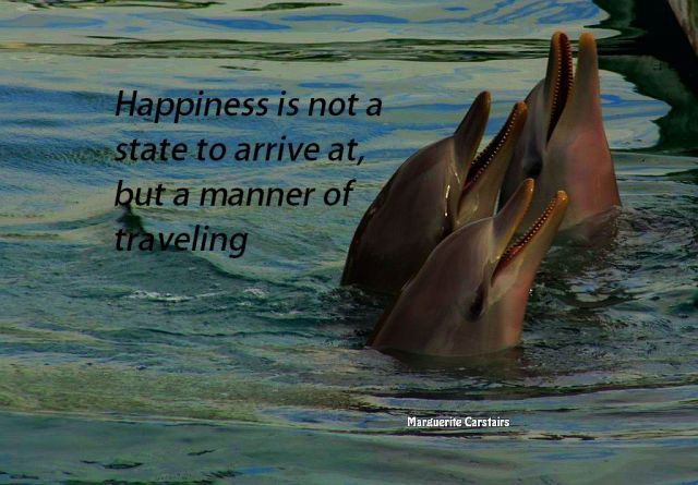 Happiness is not a state to arrive at, but a manner of traveling