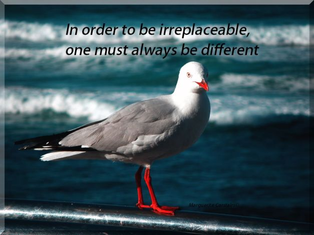 In order to be irreplaceable, one must always be different