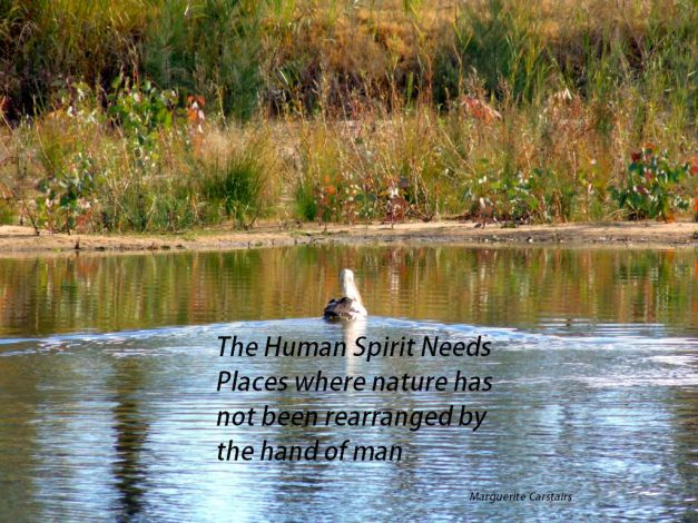 The Human Spirit Needs Places where nature has not been rearranged by the hand of ma