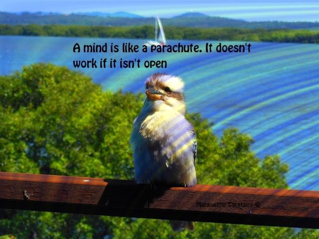 A mind is like a parachute. It doesn't work if it isn't open