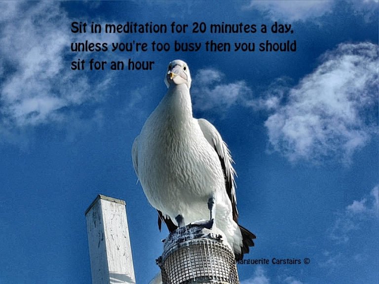 Sit in meditation for 20 minutes a day, unless you're too busy then you should sit for an hou