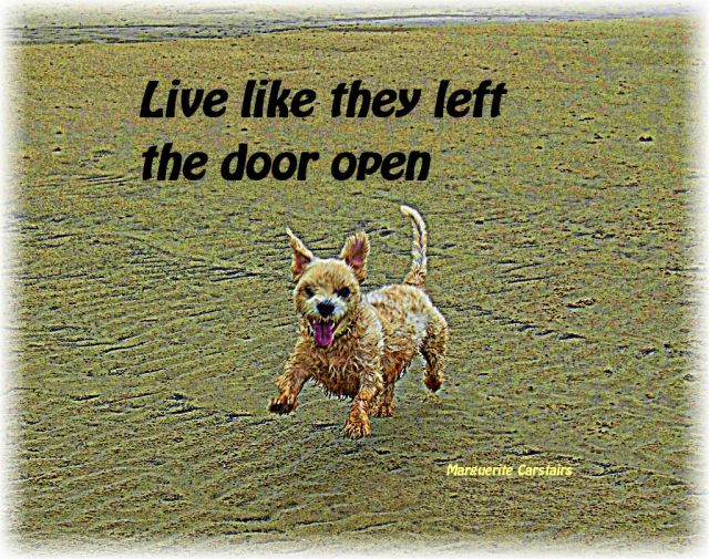 Live like they left the door open