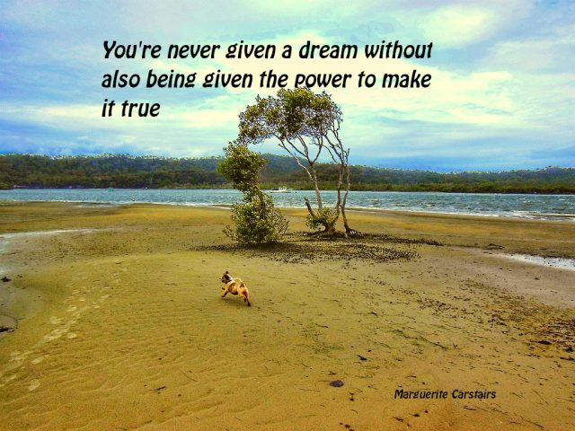 You're never given a dream ...2