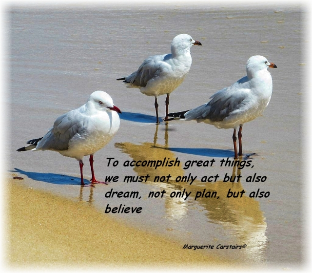 To accomplish great things, we must not only act but also dream, not only plan, but also believe