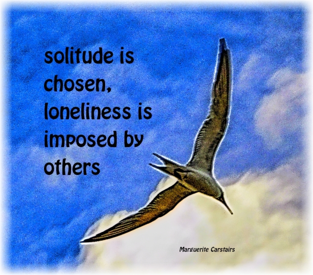 solitude is chosen, loneliness is imposed by others