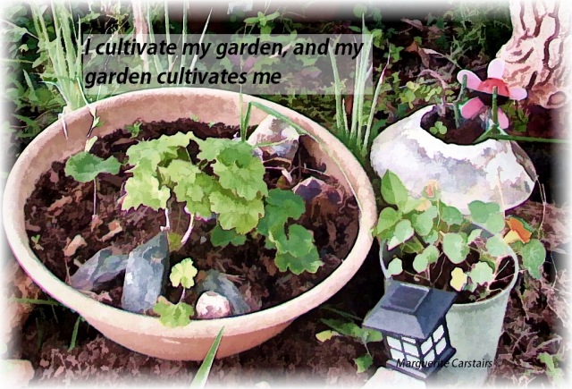 I cultivate my garden, and my garden cultivates me