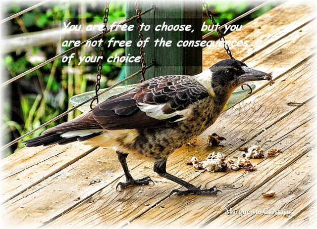 You are free to choose, but you are not free of the consequences of your choice
