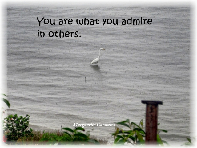 You are what you admire in others.