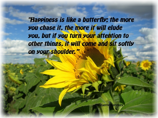 Happiness is like a butterfly..2