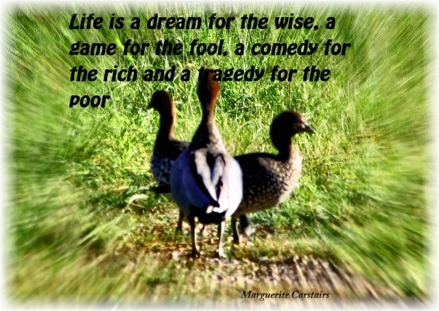 Life is a dream for the wise, a game for the fool, a comedy for the rich and a tragedy for the poor