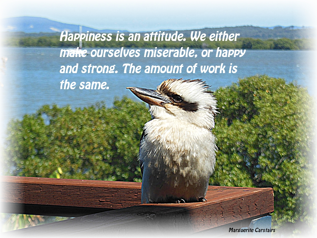 Happiness is an attitude